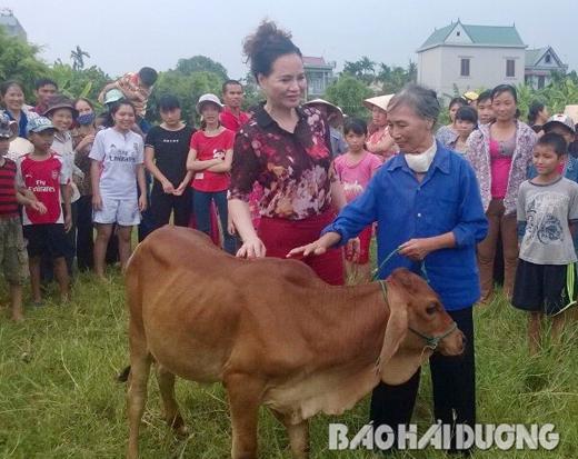 Tang bo o Thanh Ha